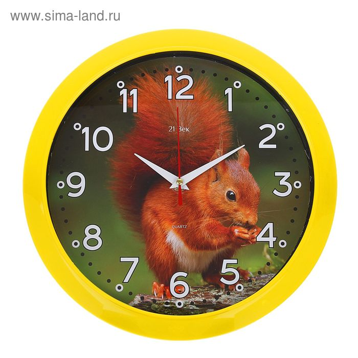 "Часы настенные круглые ""Белка"", 26х26 см желтый обод"
