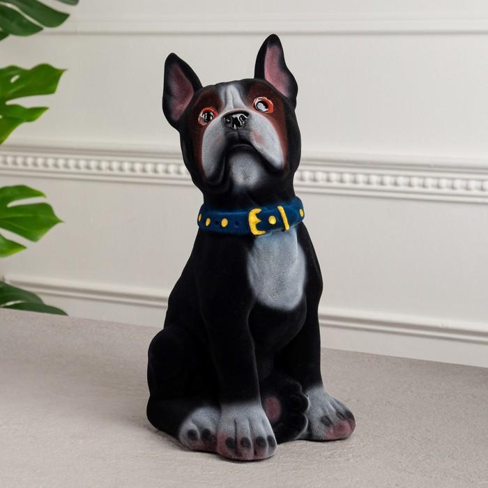 "Копилка ""Собака Боксёр"" флок, чёрная"