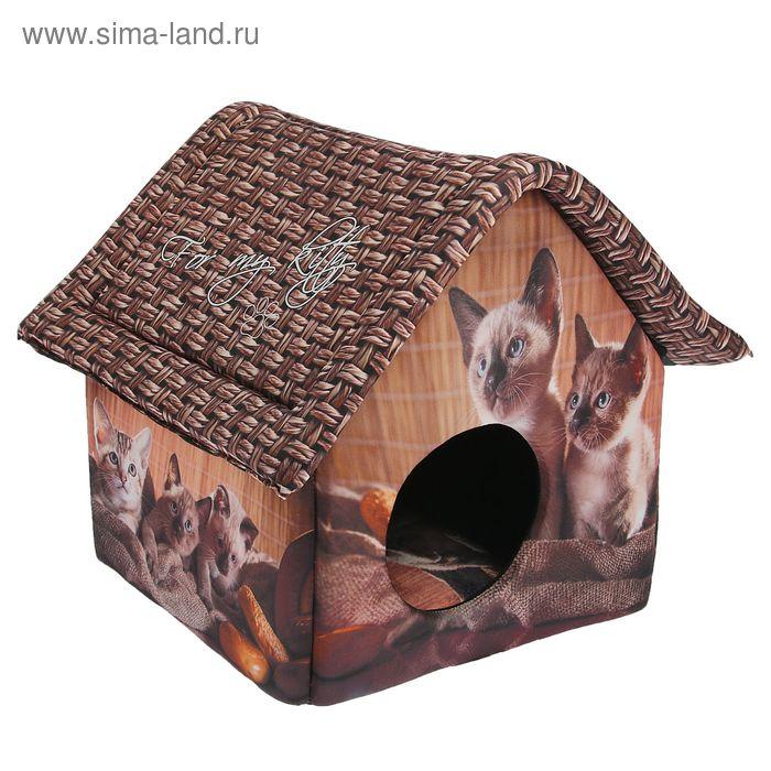 """Домик для животных """"Котята и мешковина"""", 33 х 33 х 40 см"""