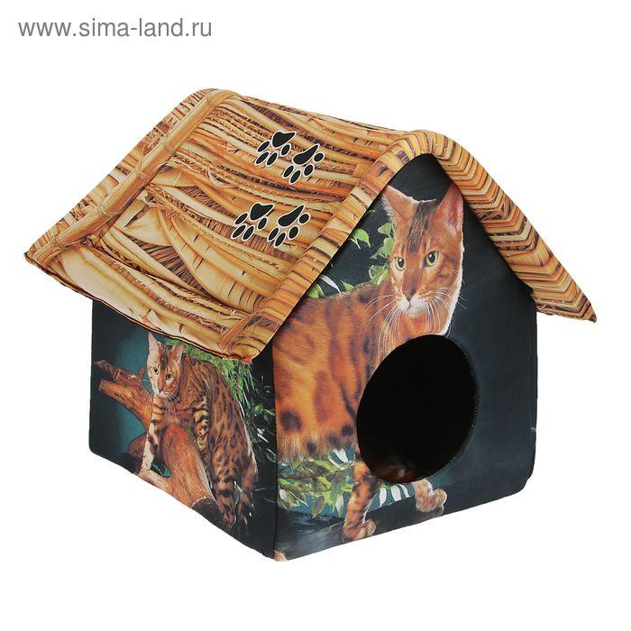 """Домик для животных """"Бенгальский кот"""", 33 х 33 х 40 см"""