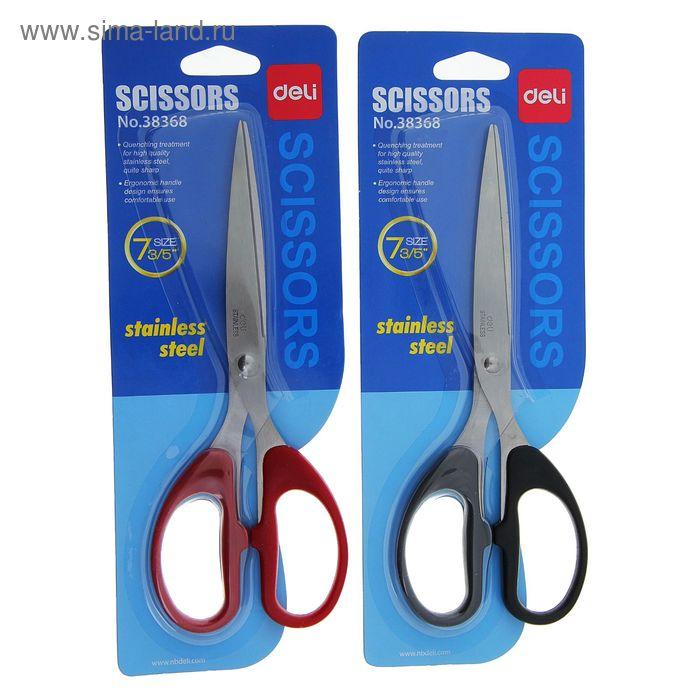 Ножницы канцелярские 19,5см пластиковые ручки МИКС на блистере DELI