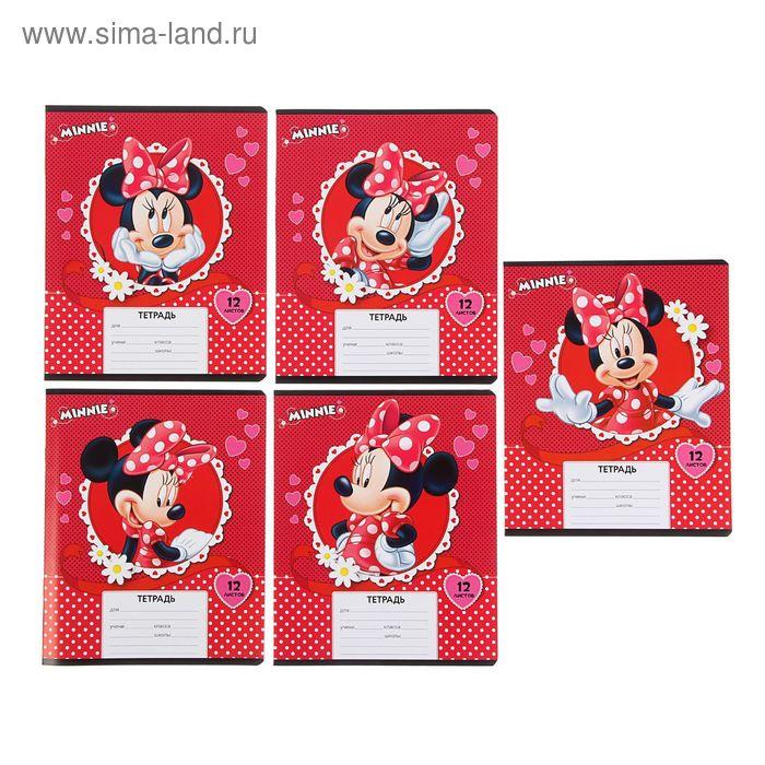 """Тетрадь 12 листов линейка Disney """"Минни"""", картонная обложка, 5 видов МИКС"""
