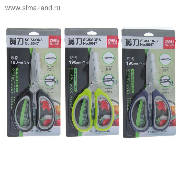 Ножницы канцелярские 19см пластиковые ручки МИКС на блистере DELI