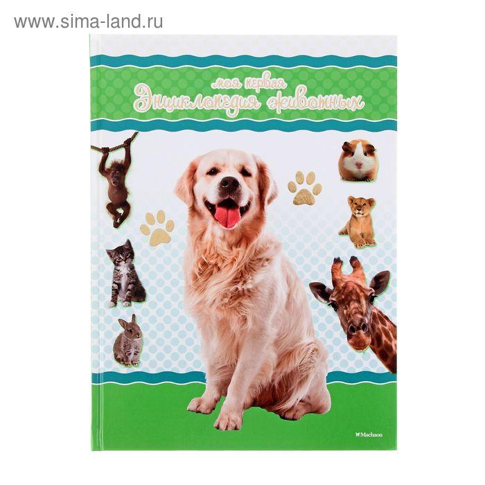 Моя первая энциклопедия животных. Коэ Н.