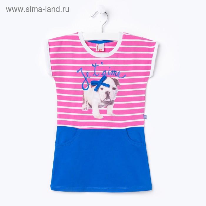 Платье для девочки, рост 98 см, цвет розовый/синий (арт.CSK 61136 (98))