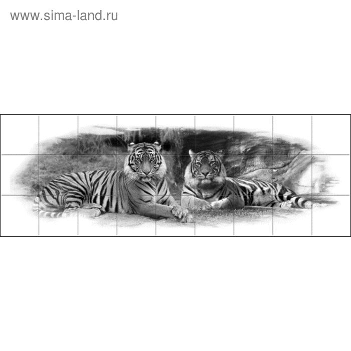 Фартук ХДФ Тигры монохром 695х2070х3 мм