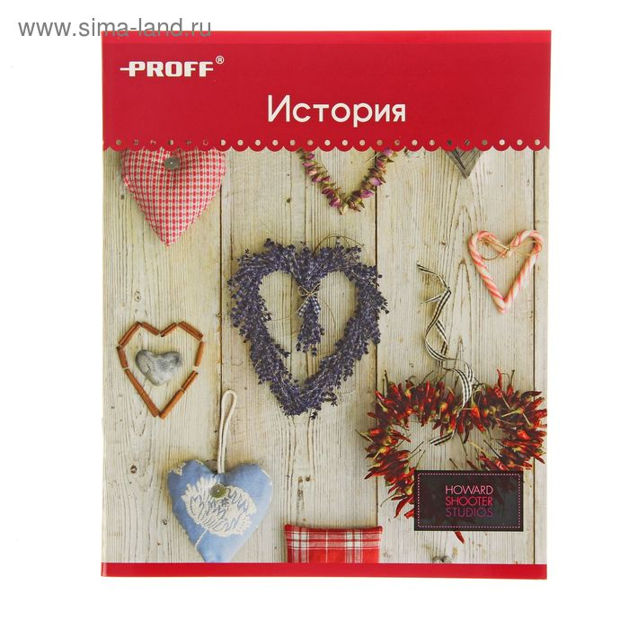 """Тетрадь предметная Hearts 48 листов клетка """"История"""", картонная обложка, двойной лак"""