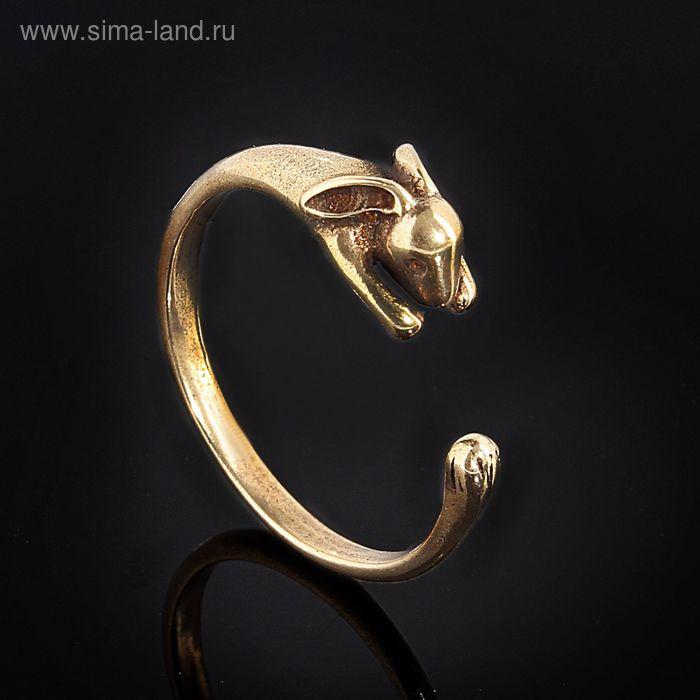 "Кольцо ""Зайя"", размер 16, цвет бронзовый"