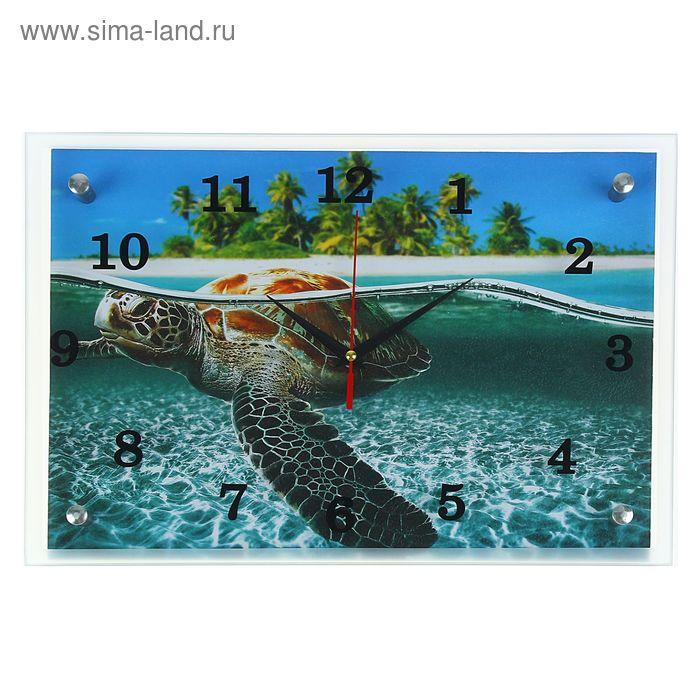 """Часы настенные прямоугольные """"Морская черепаха"""", 25х35 см"""