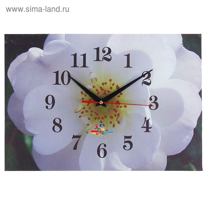 "Часы настенные прямоугольные ""Белый цветок"", 25х35 см"