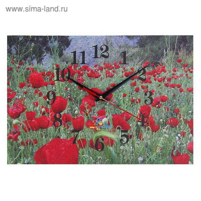 """Часы настенные прямоугольные """"Поле красных цветов"""", 25х35 см"""