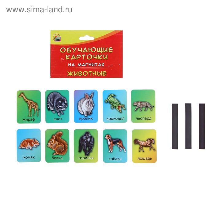 """Обучающая игра  на магнитах """"Животные """" в пакете КМ-6072"""