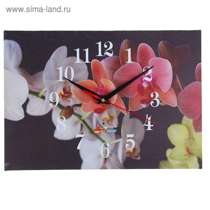 """Часы настенные прямоугольные """"Разноцветные орхидеи"""", 25х35 см"""