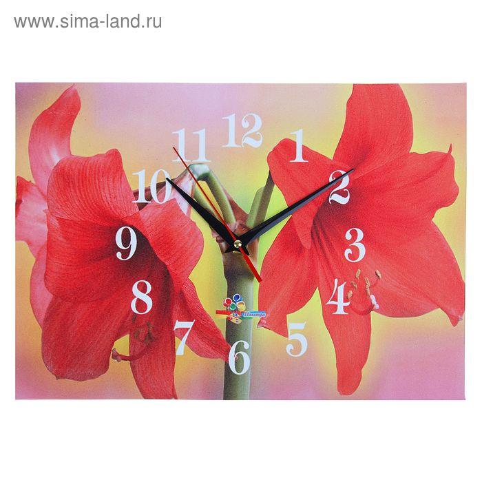 """Часы настенные прямоугольные """"Цветы-фонарики"""", 25х35 см"""