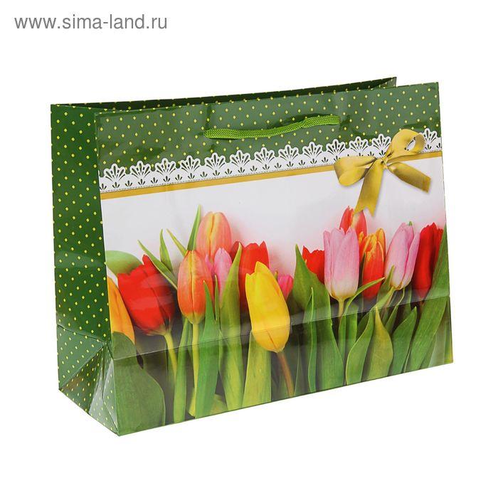 """Пакет подарочный """"Юность"""" 32.5 x 24.5 x 12 см"""