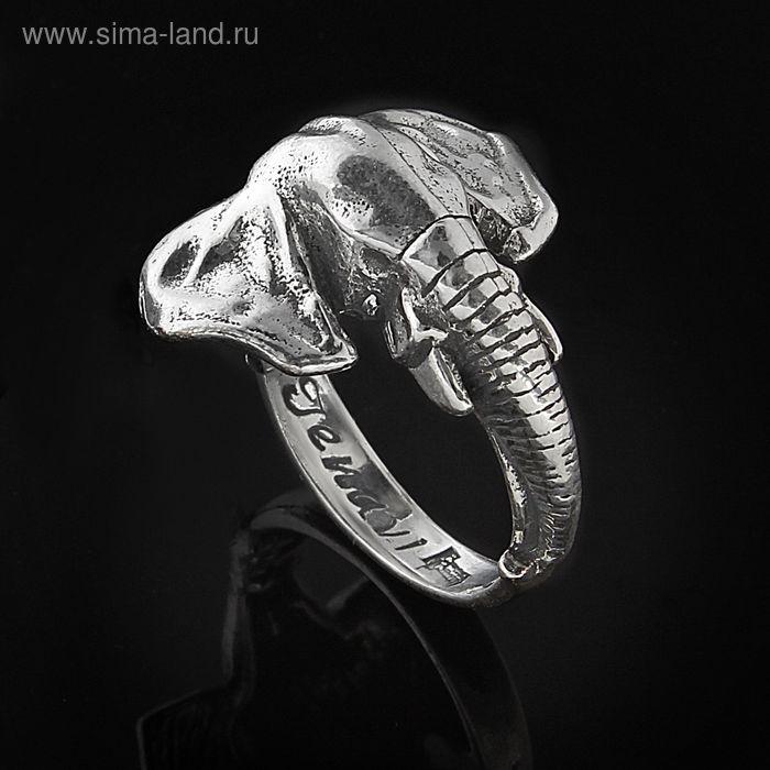 """Кольцо """"Гуандо"""", размер 16, черненое серебро"""