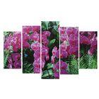 """Модульная картина на подрамнике """"Фиолетовая орхидея"""", 2 — 25×52, 2 — 25×66,5, 1 — 25×80, 80×140 см"""