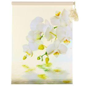 """Штора-ролет 50х160 см """"Орхидея"""", цвет бежевый"""