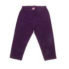 Бриджи для девочки, рост 140 см (72), цвет фиолетовый (арт. CSJ 7498)