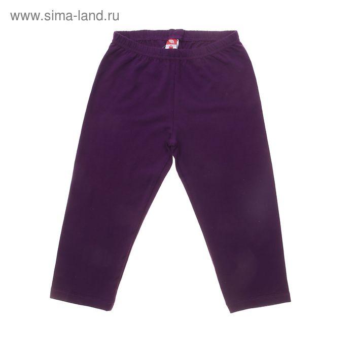 Бриджи для девочки, рост 134 см (68), цвет фиолетовый (арт. CSJ 7498)