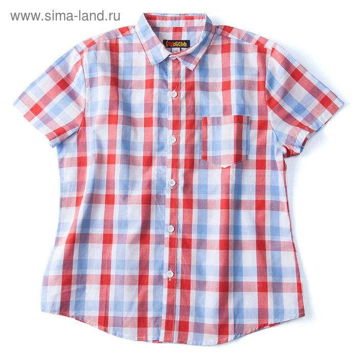 Рубашка для мальчика, рост 134 см, цвет красный, принт клетка (арт. 91023б)