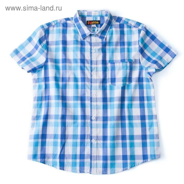 Рубашка для мальчика, рост 134 см, цвет голубой, принт клетка (арт. 91023б)