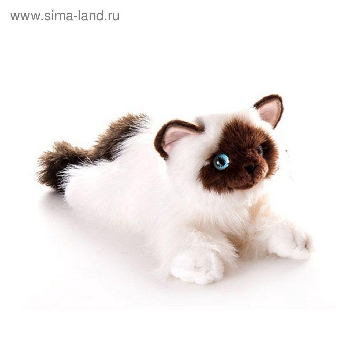 "Мягкая игрушка ""Кошка сиамская"""