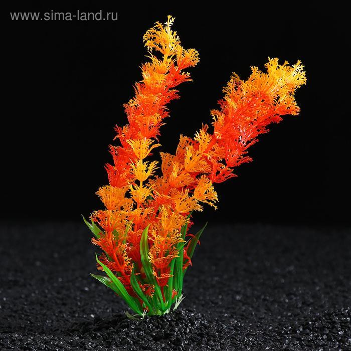 Растение искусственное с распылителем, 14 х 14 х 20 см