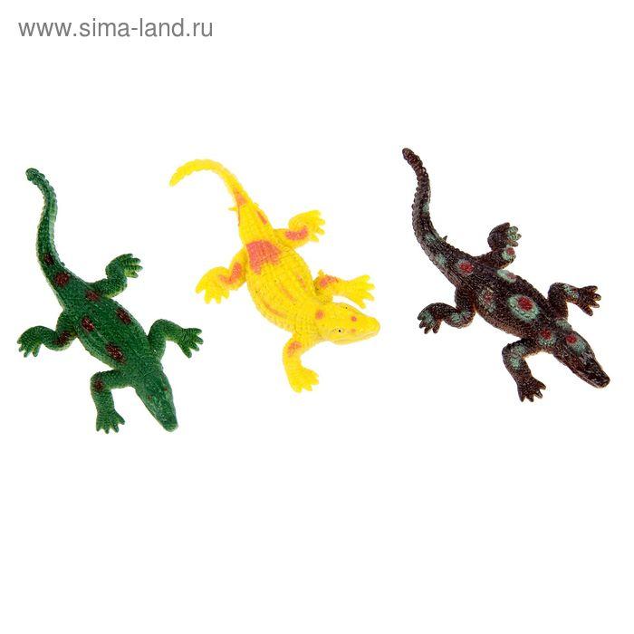 Набор для аквариума из 3 крокодильчиков, микс видов