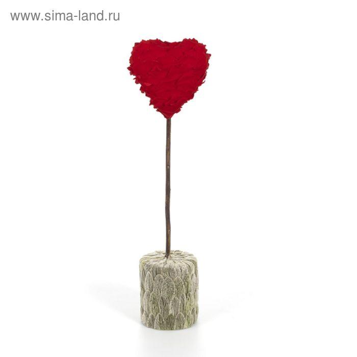 "Декоративная композиция ""Сердце"" из лепестков роз и чистеца, 12,5 х 12,5 х 49 см, красный"