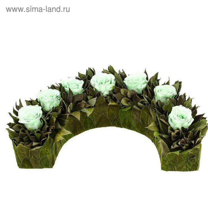 """Декоративная композиция """"Дэми"""", 32 х 19 х 9 см, зеленый"""