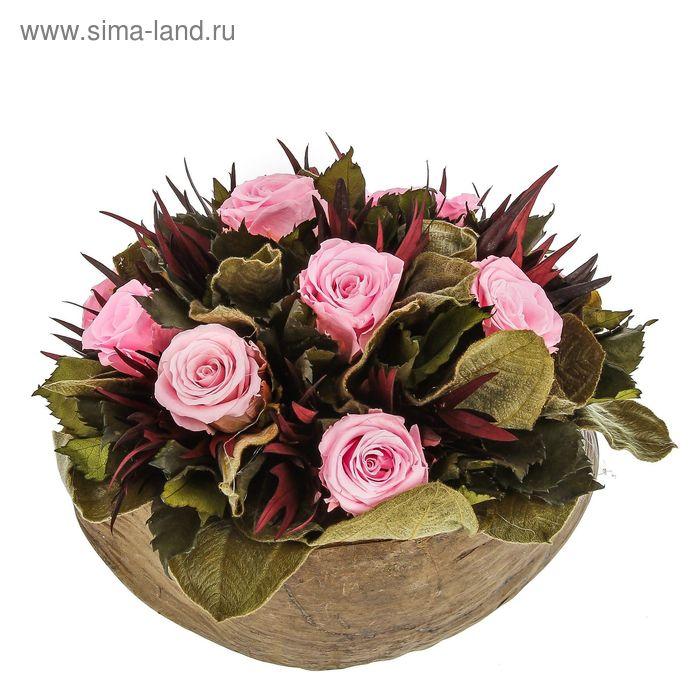 "Декоративная композиция ""Гладкий Кокос"", 20 х 20 х 18 см, розовый"