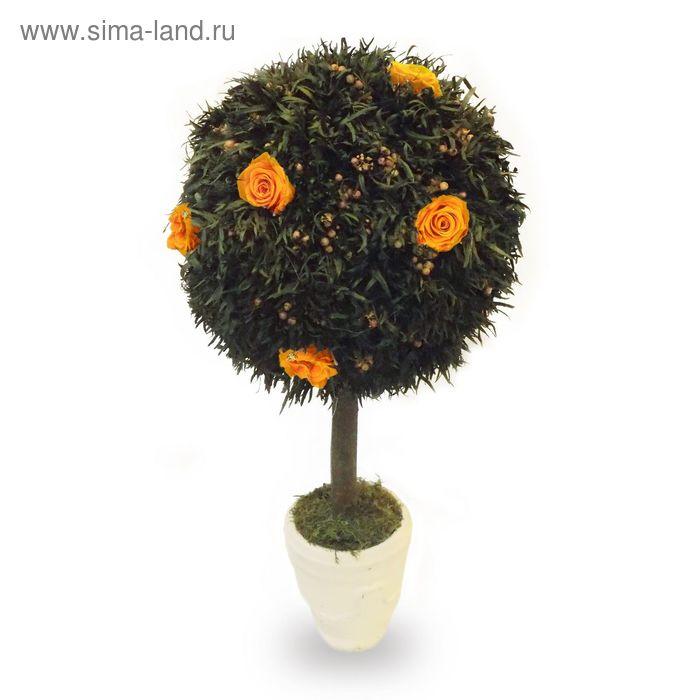 """Декоративная композиция """"Перчик"""" топиарий средний, 26 х 26 х 55,5 см, оранжевый"""