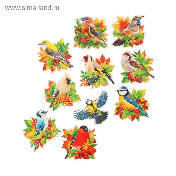 """Набор открыток на липучке с термографией """"Птицы"""""""