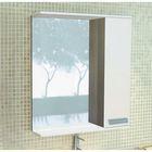 """Зеркало-шкаф для ванной """"Манчестер-60"""" 63,2 х 60 х 13,4 см, цвет венге"""