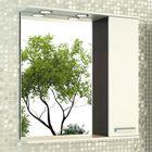 """Зеркало-шкаф для ванной """"Манчестер-75"""" 78,6 х 75 х 15,4 см, цвет венге"""