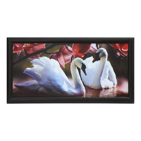 Картина 'Пара лебедей' Ош