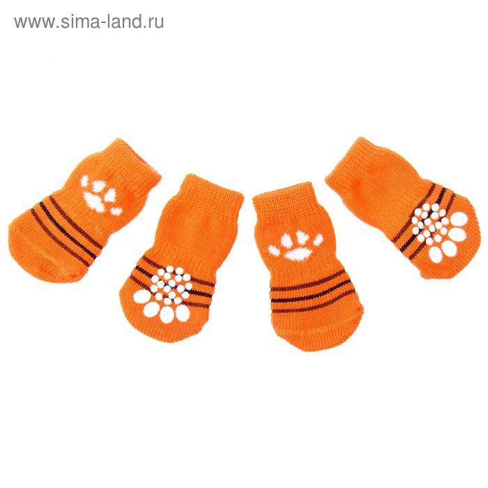 """Носки хлопковые нескользящие """"Лапка"""", размер L (3,5/5 * 8 см), набор 4 шт"""