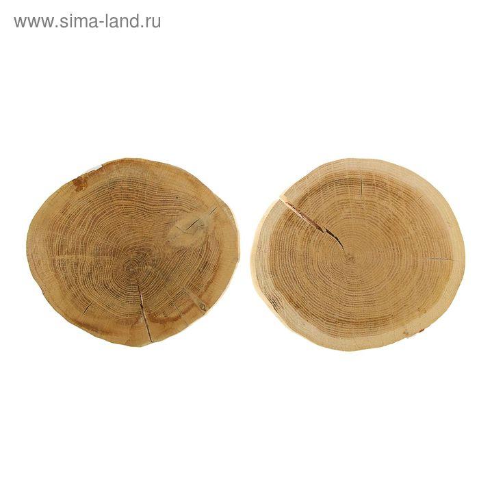 Спил дубовый шлифованный, СДШ 2, сушёный (d 20-25см, h 3см), шт