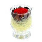 Композиция в вазе, роза красная, 9 х 9 х 10,5 см