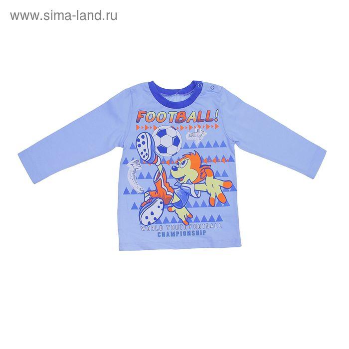 Джемпер для мальчика, рост 86 см (18 мес.), цвет голубой/васильковый (арт. Н524)