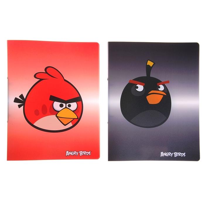 Папка на 2 кольцах А4 пластиковая Angry Birds, МИКС