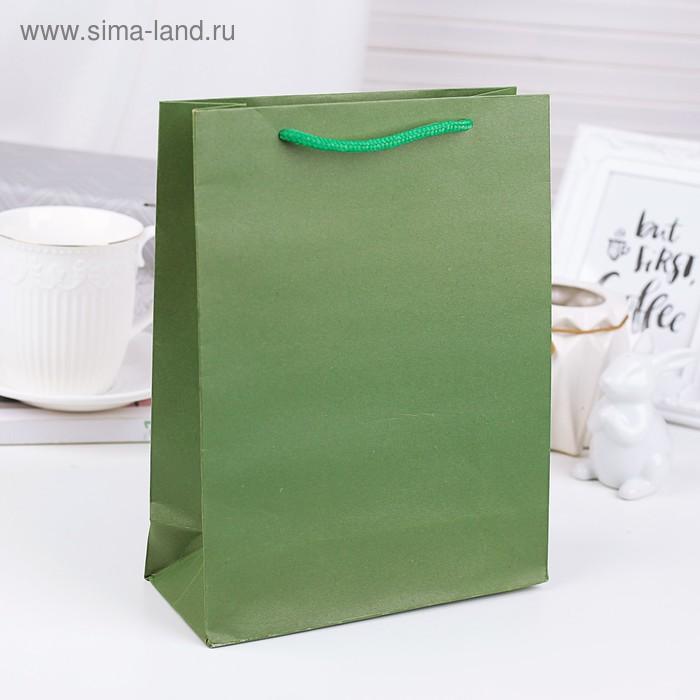 Пакет крафт зелёный, 19 х 25 х 8 см