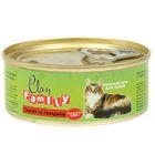 Влажный корм CLAN  FAMILY для кошек, паштет из говядины, ж/б, 100 г