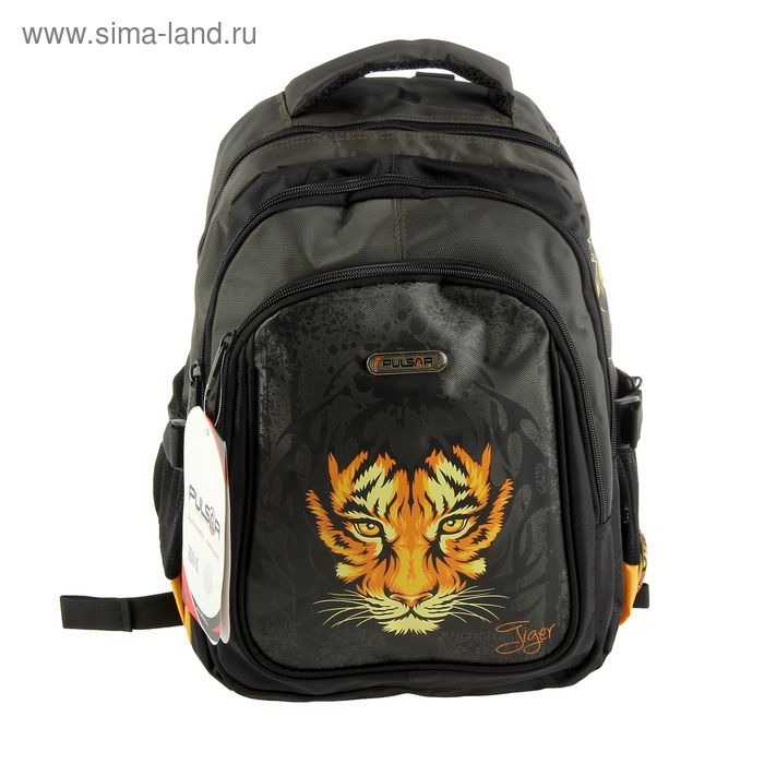 Рюкзак школьный эргономичная спинка для мальчика Pulsar 8049-143, 38*25*20 «Тигр» 8049-143