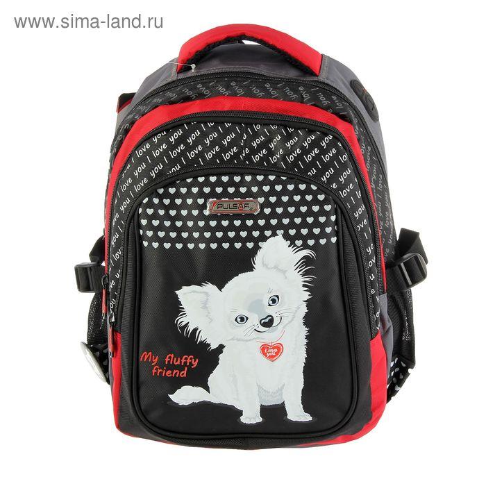Рюкзак школьный эргономичная спинка для девочки Pulsar 8049-153, 38*25*20 «Собачка» 8049-153