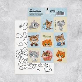 Наклейки декоративные «Котята», 11 х 15 см Ош