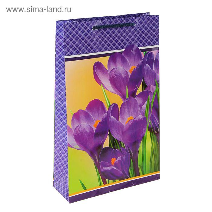 """Пакет подарочный """"Фиолетовое очарование"""" 40,5 х 24,8 х 9 см"""