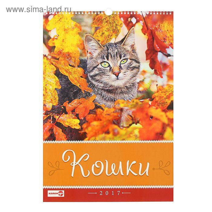 "Календарь перекидной на ригеле ""Кошки"", 34х49 см"