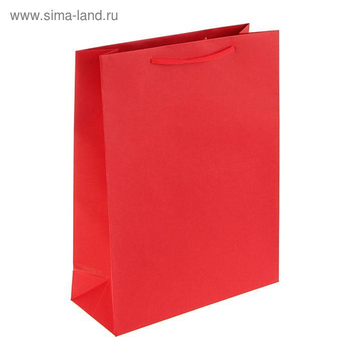 Пакет подарочный 32 х 25 х 10 см, красный